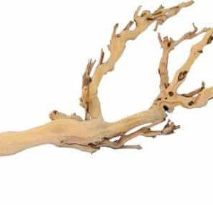houten tak terrarium baardagame