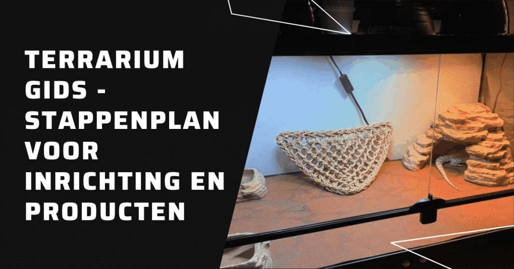 Hoe bouw je een terrarium gids - stappenplan voor inrichting en producten